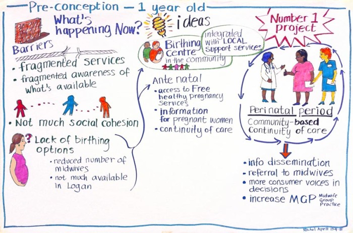 Pre-conception - 1 year old, a visual map of issues and solutions for young parents